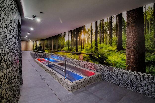 Hotel Slovakia wellness