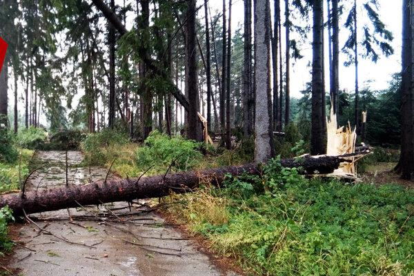 Cesta do Múzea slovenskej dediny v Martine je zahataná.