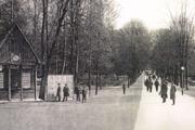 Sokolský sad, dnes Mestský park.