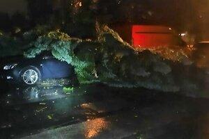 Na Ždiarskej ulici spadol strom na auto.