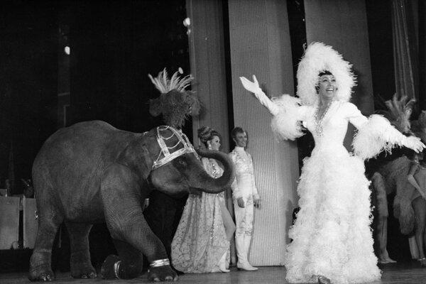 Americká herečka speváčka tanečnica odbojárka Joséphine Bakerová.