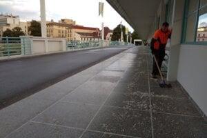 Mŕtve podenky každé ráno zametajú zamestnanci mesta.