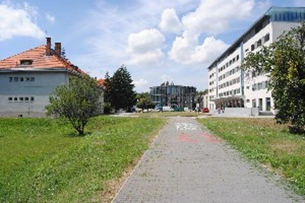 Stará budova Fakulty Stredoeurópskych štúdií (vľavo) stojí oproti modernej Pedagogickej fakulte (vpravo).