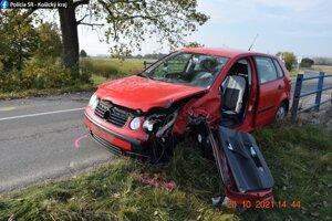 Vodič zostal po nehode zranený.