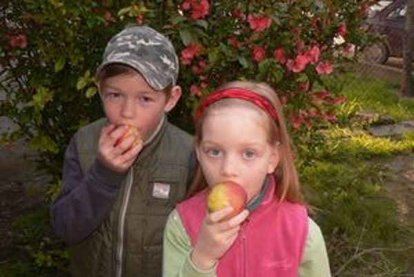 Jabĺčka najmenším chutia, nikdy ich neodmietnu.