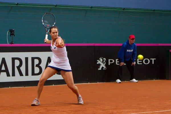 Maximom Jany Čepelovej z antuky na Roland Garros je druhé kolo z predvlaňajška.