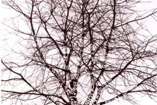 Dezider Tóth: Sneh na strome, fotografia, 1970.