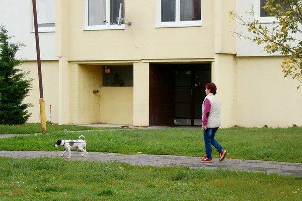 V zastavanom území mesta je voľný pohyb psov zakázaný.