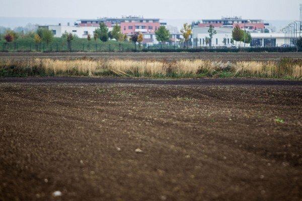 Pole v Čiernej Vode, ktoré od reštituentov získala firma LMReal bývalého spolupracovníka ministra obrany.