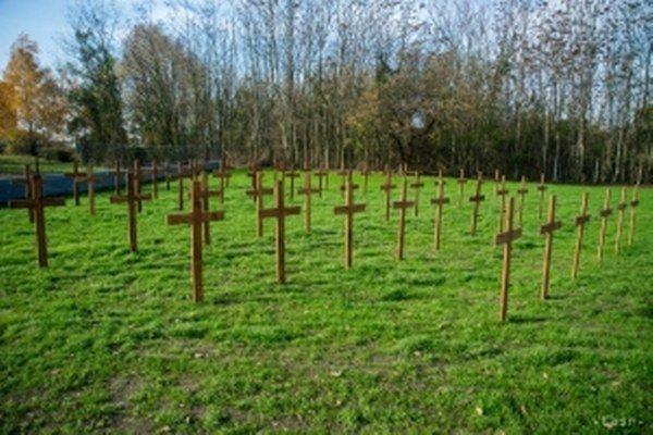 Obnovený cintorín vojenských zajatcov I. svetovej vojny.