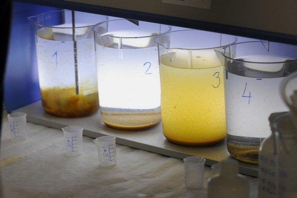 Vzorky budú analyzovať na prítomnosť dusičnanov.