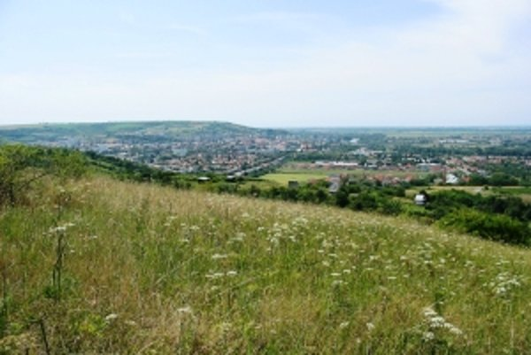 Výhľad z PR Sedliská na Hlohovec.