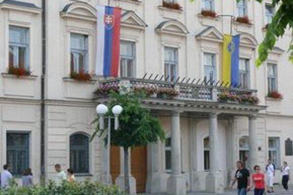 Všetky podania, ktoré Mestskému úradu v Trnave adresoval dôchodca, sa týkali výkonu správy mestského majetku.
