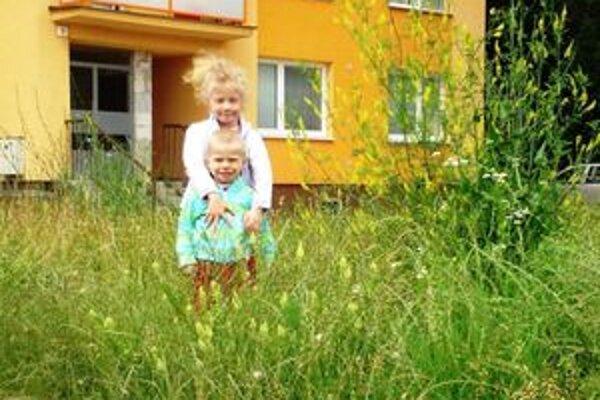 Tráva na detskom ihrisku na Tamaškovičovej ulici siaha ešte aj dnes do výšky päťročného dieťaťa.