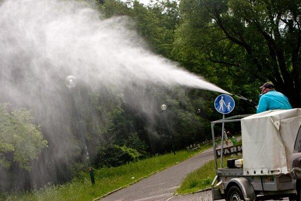 Inváznu rastlinu likvidujú pracovníci chemickým postrekom.