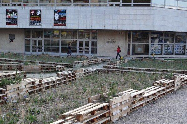 Mesto bude rešpektovať, že na ploche nechcú ľudia žiadnu stavbu.