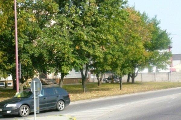 Pre výstavbu kruhovej križovatky musia odstrániť aj stromy.