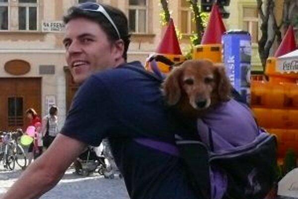 V lesoparku by psíčkari nemali nechať psov voľne pobehovať.