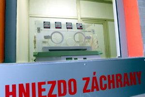Trenčín, ako jediné krajské mesto na Slovensku, nemá hniezdo záchrany.