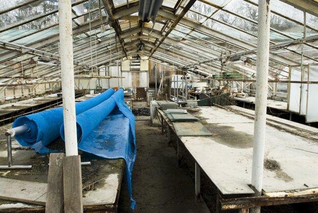 Schátrané skleníky v areáli Ekoiuventy.