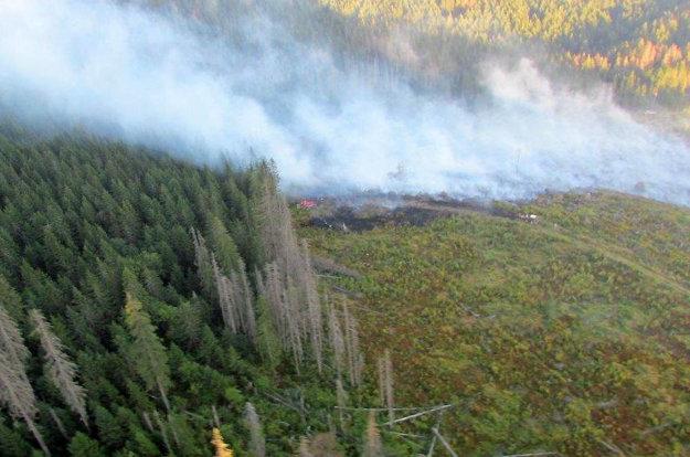 Minuloročný požiar lesa na Babej hore sa zastavil pár metrov pred vzácnym pralesom a poľskou hranicou.