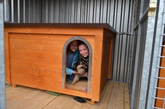 Spoločne s dobrovoľníčkami zvieratká vyskúšali aj nové búdy. :)