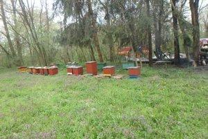 Úle s včelami sa podarilo zachrániť.