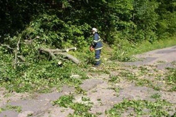 Novobanskí hasiči dnes z cesty odstraňovali strom.