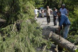 Lesníci rátajú škody po dňoch nepriaznivého počasia.