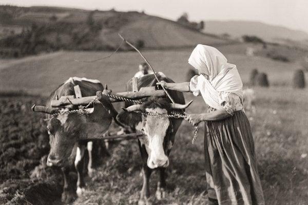 Všetko robil tak, akoby to bola jeho posledná možnosť. Jeho chlapčenská zvedavosť ožila v dospelosti v rôznych podobách, hovorí o Karolovi Plickovi nová veľká publikácia Mariána Pauera. Na snímke Orba, Púchovská dolina, tridsiate roky 20. storočia.