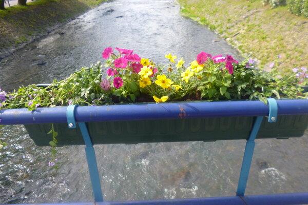 Črepníky osadili, aby skrášlili okolie mesta. Netušili však, že im kvety o pár dní zmiznú.