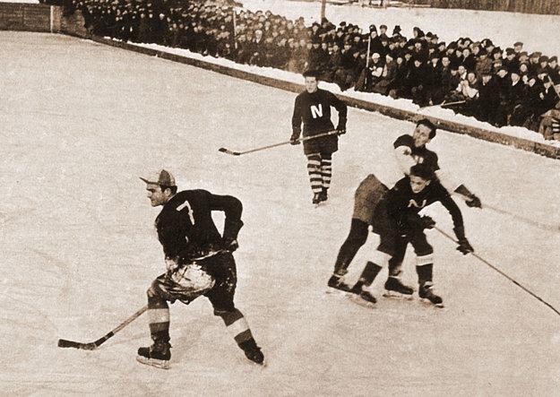 Na jeseň 1931 vznikol klub ľadového hokeja pod patronátom AC Nitra.