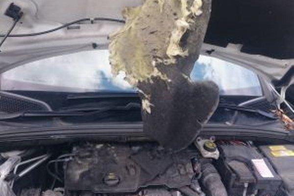 Takto dopadla motorová časť auta nášho čitateľa po pobyte kuny.