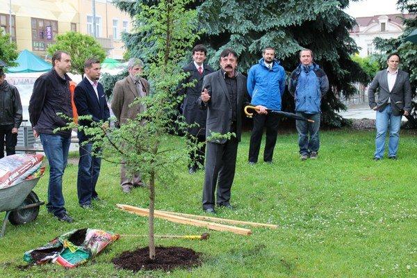 Na počesť založenia okrášľovacieho spolku vysadili v centre Levíc strom.