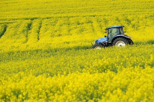 V Levickom okrese je najväčšia výmera olejnín a zeleniny v kraji.