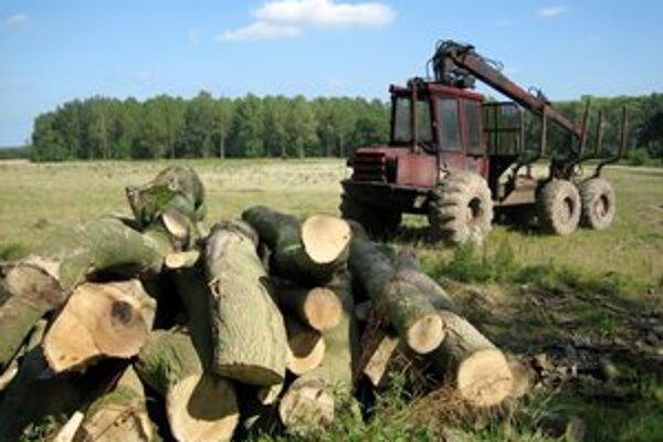 Chlapec sa mal zraniť pri práci s drevom.