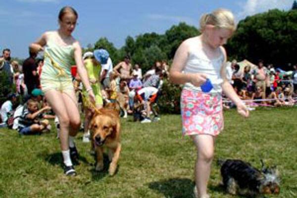 Mesto chce podmienky držania psov sprísniť.