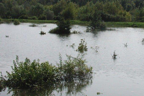 Oddávna platilo, že o neznámych nebožtíkov sa musí postarať tá obec, v chotári ktorej ich rieka vyložila na breh.