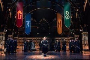 Rose (Cherrelle Skeete), dcéra Rona a Hermiony prichádza ako nováčik do Rokfortu. Ktorú fakultu jej vyberie zázračný klobúk? A kam sa dostane jej bratranec Albus Severus Potter a syn Draca Malfoya – Scorpius?