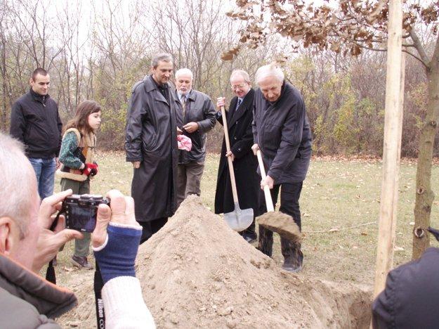 Rok 2009 - maestro Chudík sadí dub na Lúke vďaky