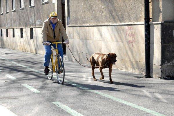 Cyklotrasy v meste sú. Je ich však málo.