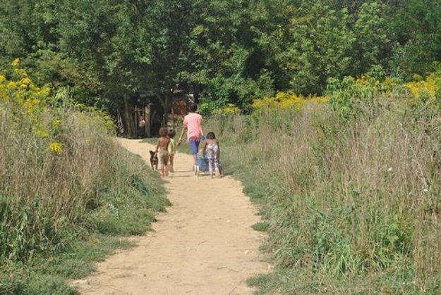 V Mašličkove žije 75 detí v predškolskom veku, na základné a stredné školy chodí 86 žiakov.
