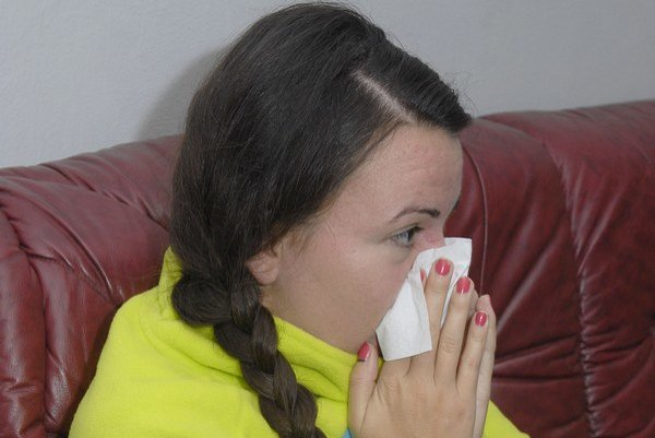 Alergici. Začínajú ich svrbieť nosy.