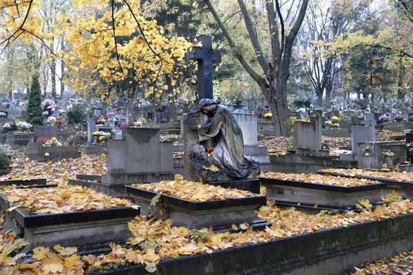 Verejný cintorín. Posledných voľných miest na klasické hroby má okolo 300.