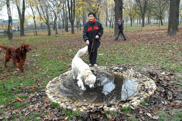 Psičkári sa sťažujú. Fontánku považujú za nedomyslenú, ak sa nedá zabezpečiť, aby v nej bola čistá tečúca voda.