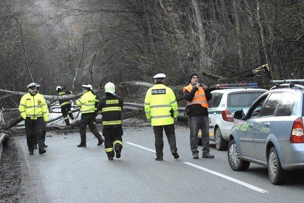 Spadnutý strom poškodil auto a zabarikádoval cestu. Motoristom tiekli nervy. Hasiči museli popíliť nielen spadnutý strom, ale zrezať aj dva ďalšie, ktoré vyzerali nebezpečne naklonené.