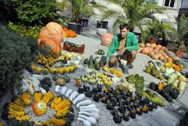 Jesenné zátišie. Príroda nadelila pestrú plejádu plodín.