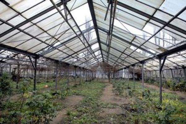 Zanedbané skleníky. Budú ich využívať ľudia bez domova.