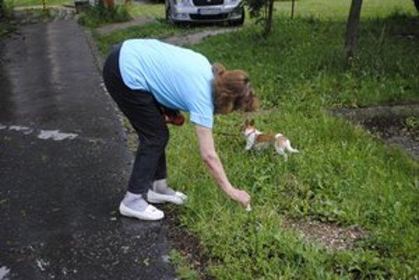 Táto žena zbiera po psovi jeho hovienka.