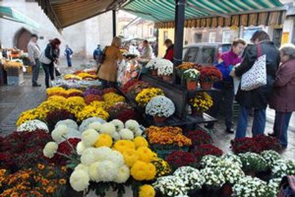 Trhoviská rozkvitli pestrými farbami chryzantém.